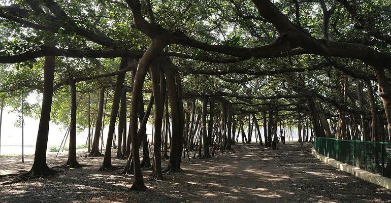 3 endroits insolites à ne pas manquer le temps d'un séjour en Inde