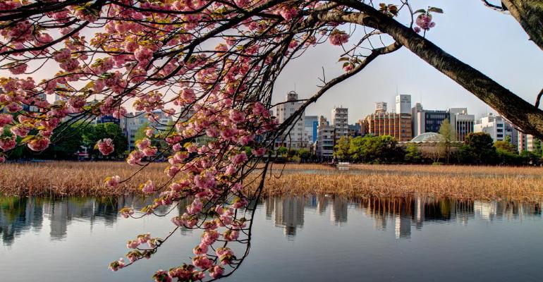 Découvrir le Japon