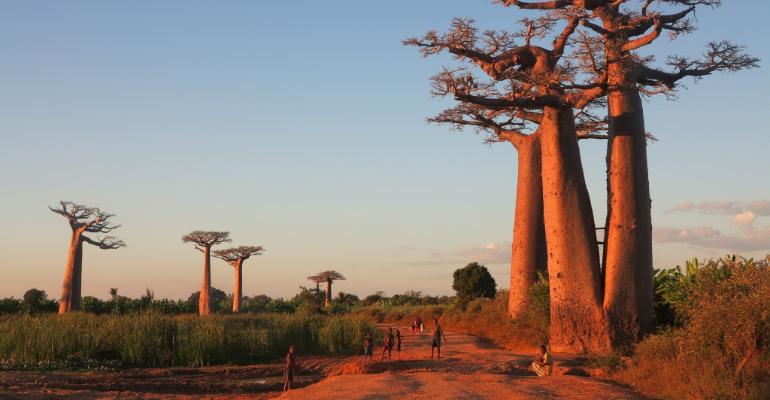 Séjour à Madagascar: la meilleure période pour parfaire son voyage